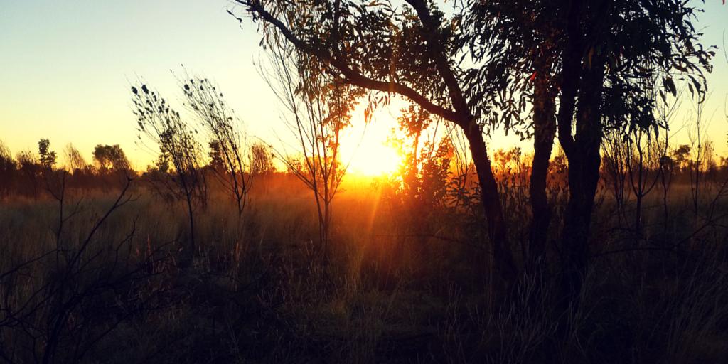 Beauté de l'outback australien