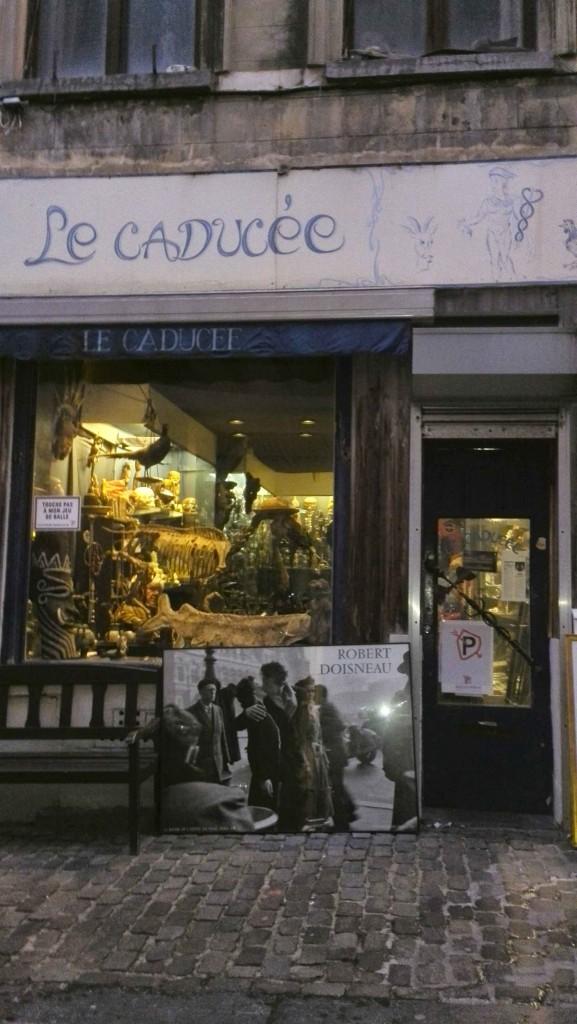 Cabinet de curiosité-Bruxelles- Le Caducée