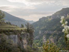 randonnée gorges du Tarn