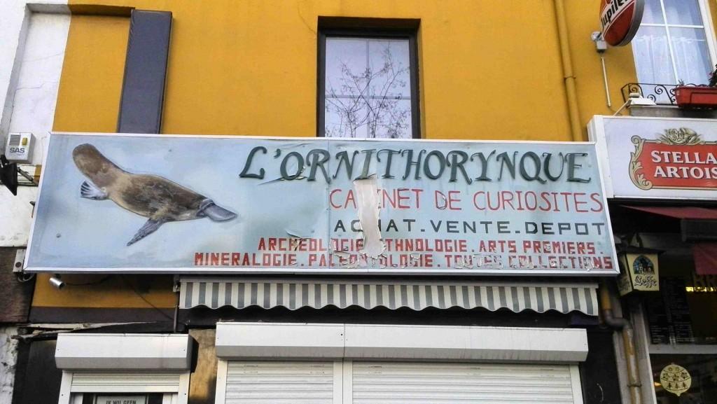 Cabinet de curiosités-bruxelles