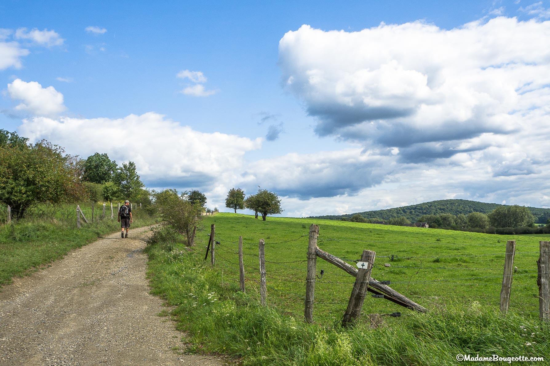 Les plus belles randonnées de Belgique - Rochefort