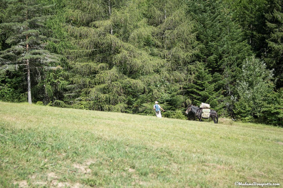 Vercors randonnée avec un ane