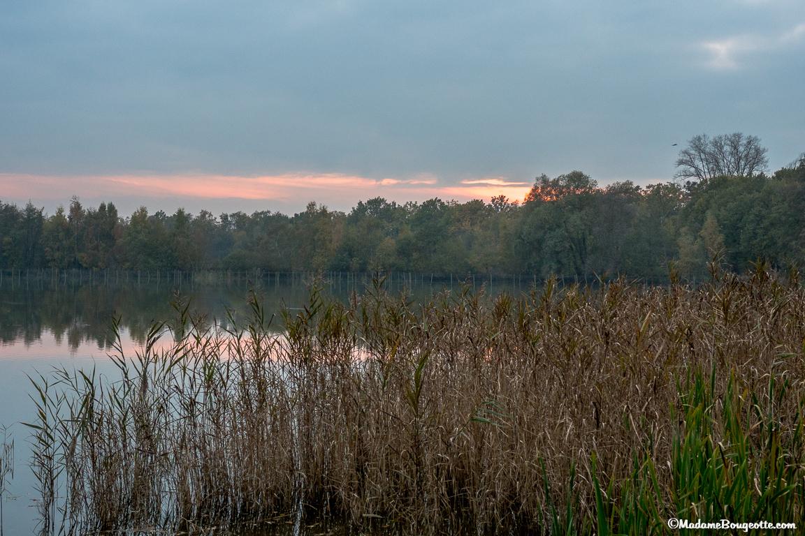 1001 étangs - Hasselt